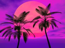Palm trees in the sun. Tropical palm trees against a colorful sky royalty free illustration