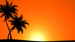 Palm Trees with Sun (Animated HD Background). HD animation of stylized palm tree silhouettes stock video