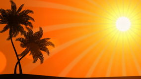 Palm Trees with Sun (Animated HD Background). HD animation of stylized palm tree silhouettes stock video footage