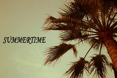Palm Trees Sun Light Sunset Sunrise Bleached Toned Effect Summertime inscription royalty free stock photo