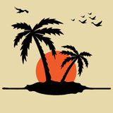 Palm trees and sunrise. Abstract colorful illustration with palm trees, birds flying and sunrise Stock Photos