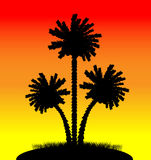 Palm trees at sunset. Illustration of a silhouette of a palm trees at sunset Stock Photography