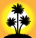 Palm trees at sunset. Silhouette of a palm trees at sunset Stock Photography
