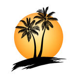 Palm trees sunset Stock Photography