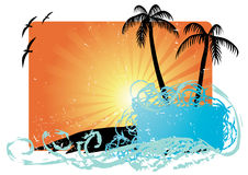 Palm trees with sunset  Stock Images