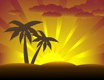 Palm Trees At Sunset. Two palm trees with sunset in the background Stock Image