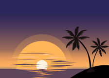 Palm trees and sunset. Background Vector Illustration
