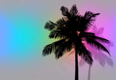 Palm Trees Sunset Retro. Tropical coconut palm tree silhouettes illustration in  format Stock Photo