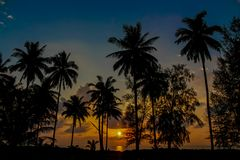 Palm trees sunset silhouette at tropical beach resort. Palm trees sunset silhouette at tropical sea resort. beautiful luxury sea beach resort in Tropics Stock Images