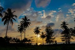Palm trees sunset silhouettes on the beach. Palm trees sunset silhouette at tropical sea resort. beautiful luxury sea beach resort in Tropics, Thailand Stock Photos
