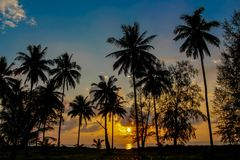 Palm trees sunset silhouettes on the beach. Palm trees sunset silhouette at tropical sea resort. beautiful luxury sea beach resort in Tropics, Thailand Stock Photo