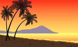 Palm trees at sunset. Sunet at the beach with tree palms Royalty Free Stock Photo