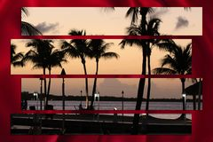 Palm trees at sunset tropical beach paradise Royalty Free Stock Image