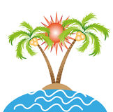 Palm Trees With Sunshine. Vector illustration of palm trees with sun on a white background Stock Photography