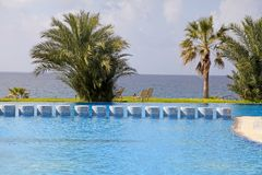 Palm trees, swimming pool and beautiful sea view Royalty Free Stock Images