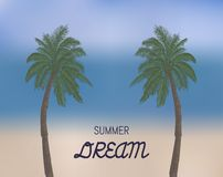 Palm trees with text in blurry background. royalty free stock photo