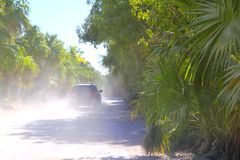 Palm trees track road car sand dust foggy. Palm trees track road with car in sand dust foggy Royalty Free Stock Image
