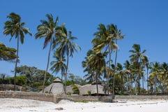 Palm trees at tropic resort on the beach. Palm trees at tropic resort on the white sand sea ocean beach luxury beautiful beach in tropic Stock Image