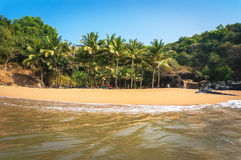 Palm trees and tropical deserted beach with clean sand and clear water. View from the sea to the palm. Palm trees and tropical deserted beach with clean sand Royalty Free Stock Image