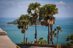 Palm trees on a Tropical island. View from the hill of palm trees and a tropical island in the sea stock images