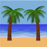 Palm trees. Two palm trees vector elements separately for decoration Stock Photos
