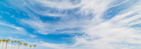 Palm trees under a cloudy sky in Santa Barbara. California Stock Photos