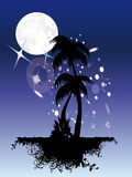 Palm trees under moon and stars vector illustration