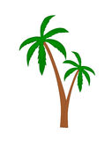 Palm trees. Royalty Free Stock Photos