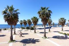 The palm trees. A view of the seaside promenade of Civitavecchia Rome Italy stock photo