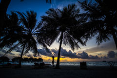 Palm trees and villas at sunset, Maldives Stock Photography