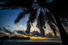 Palm trees and villas at sunset, Maldives Stock Photo