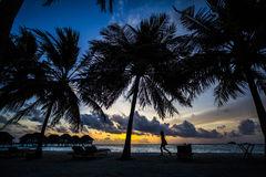 Palm trees and villas at sunset, Maldives Royalty Free Stock Photos