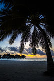 Palm trees and villas at sunset, Maldives Stock Images
