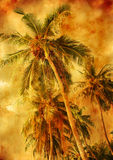 Palm trees - vintage styled picture Stock Photography