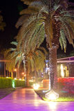 Palm trees. Walking paths with night illumination on territory hotel Royalty Free Stock Images