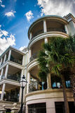 Palm trees and waterfront housing in Charleston, South Carolina. Royalty Free Stock Photo