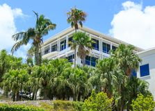 Palm Trees by White Hotel. In Bermuda Royalty Free Stock Images
