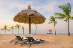 Palm trees on white sandy beach, two sunbed and parasol. View of nice tropical beach. royalty free stock image