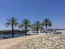 Palm trees and yachts royalty free stock photos