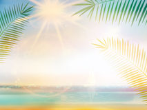Palm and tropical beach design template. Royalty Free Stock Photography