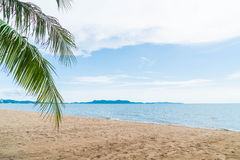 Palm and tropical beach at Pattaya in Thailand Royalty Free Stock Photography