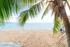 Palm and tropical beach at Pattaya in Thailand Stock Photography