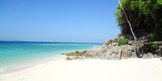 Palm and tropical beach sea sand sky. And summer day Royalty Free Stock Photo