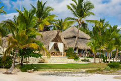 Palm and tropical beach in Tropical Paradise. Summertime holyday in Dominican Republic, Seychelles, Caribbean, Philippines, Bahama Royalty Free Stock Image
