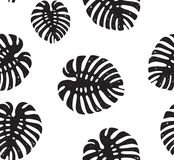 Palm Tropical leaves seamless pattern. Vector illustration Royalty Free Stock Photography