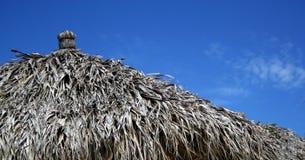 Palm umbrella. Top of a palm umbrella against a blue sky stock image
