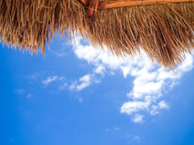 Palm umbrella Stock Photo