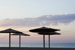 Palm umbrellas on the beach Stock Photography