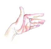 Palm van een hand royalty-vrije stock afbeelding