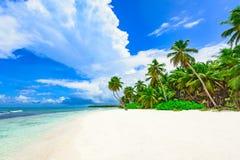 Palm van het paradijs de tropische strand de Caraïbische Zee Royalty-vrije Stock Fotografie